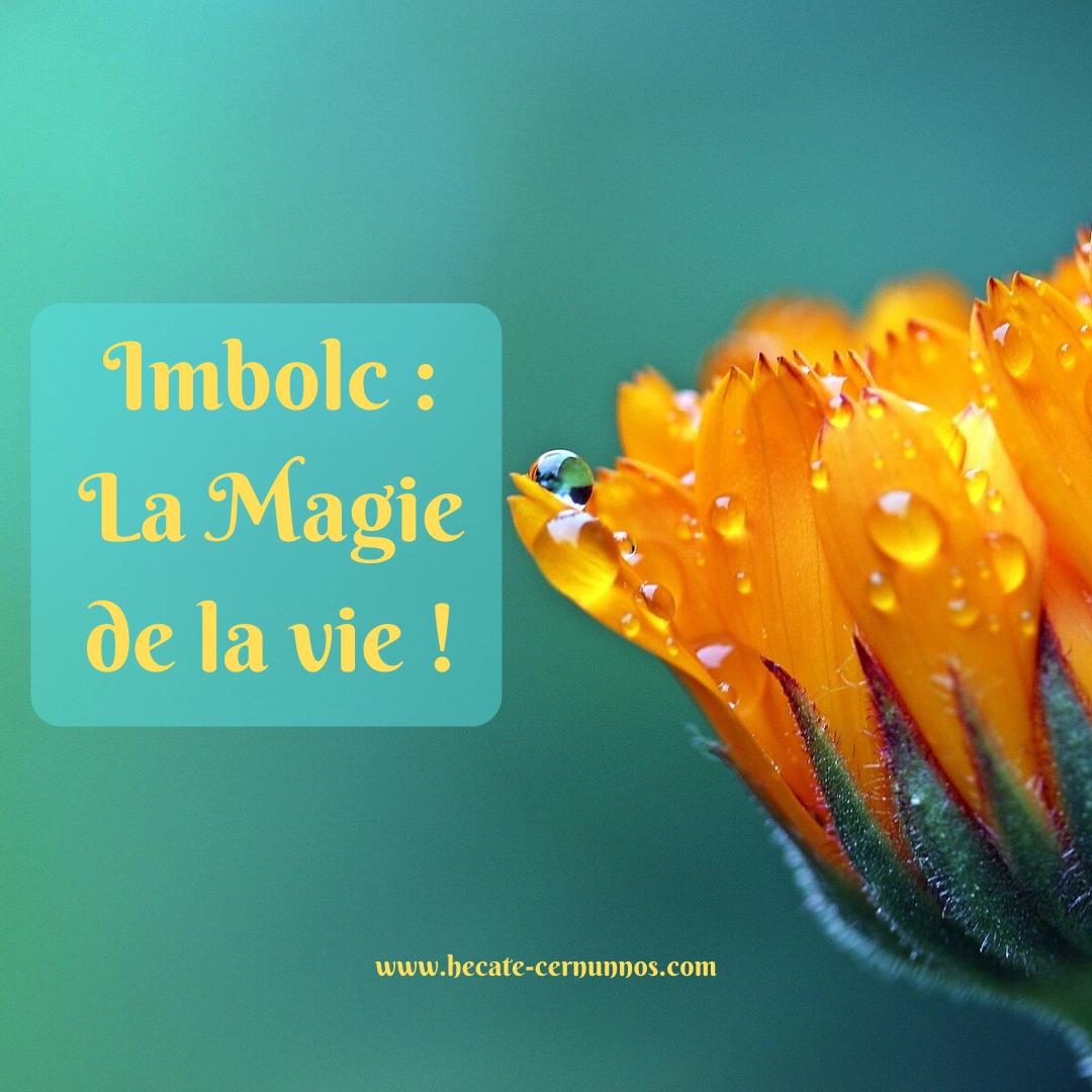 Imbolc : La Magie de la vie !
