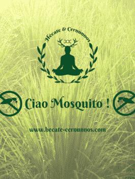 "Bougie Parfumée Artisanale ""Ciao Mosquito !"""
