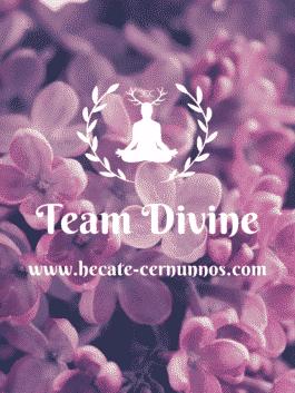 "Bougie Parfumée Artisanale ""Team Divine"""
